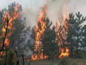 Синодальный отдел по церковной благотворительности и социальному служению направляет помощь пострадавшим в результате пожаров