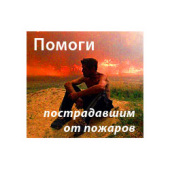 На счета Синодального отдела по церковной благотворительности и социальному служению поступило более 18 млн. рублей в помощь пострадавшим от лесных пожаров