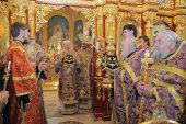 Блаженнейший митрополит Киевский и всея Украины Владимир посещает Донецкую область