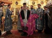 Иерарх Сербской Православной Церкви совершил молебен перед Владимирской иконой Пресвятой Богородицы