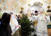 В Крещенский сочельник Предстоятель Русской Церкви совершил Божественную литургию и чин великого освящения воды в Храме Христа Спасителя