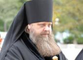 Епископ Ростовский Меркурий: Нужно научить человека думать