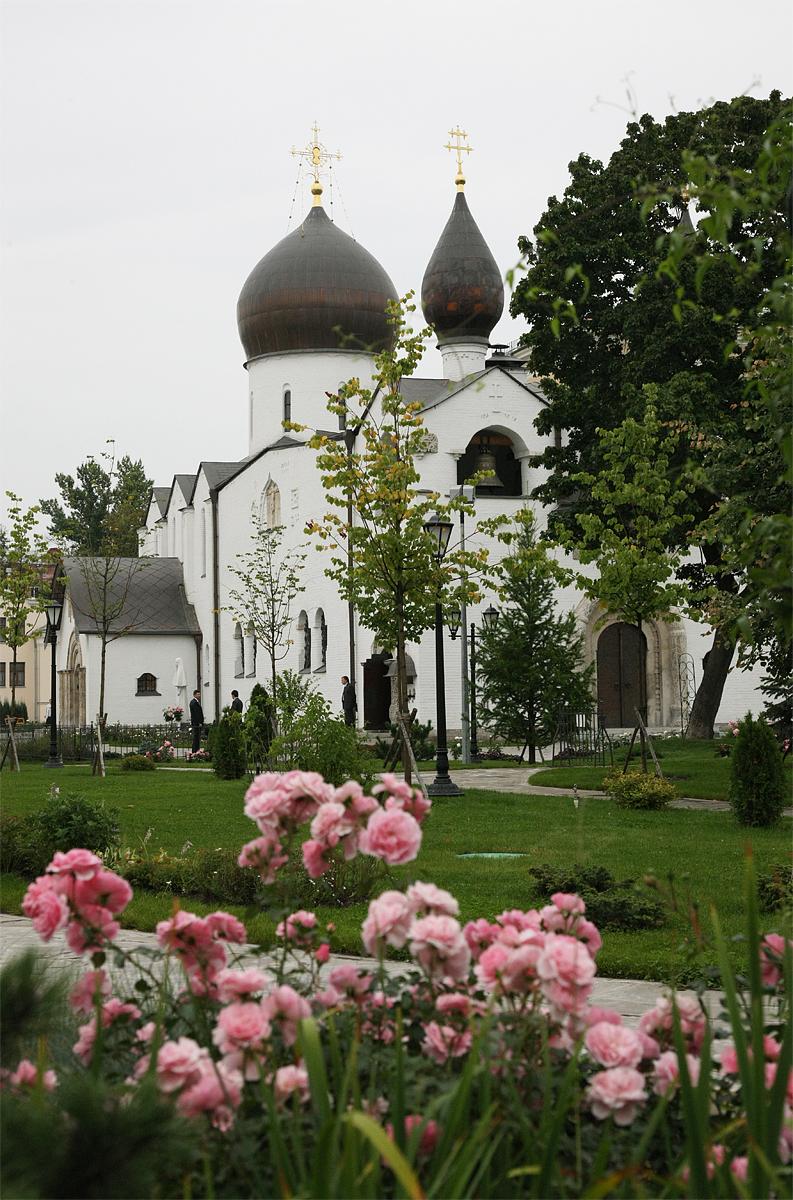 Розовый сад в марфо-мариинской обитель милосердия
