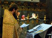 В православных соборах Вены и Будапешта совершены молебны о умножении любви и искоренении всякой ненависти