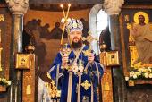 Митрополит Бориспольский Антоний: Нужно уметь различать, что тебе на самом деле нужно, и что является избыточным