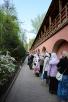 Патриаршее служение в 15-ю годовщину канонизации блаженной Матроны Московской в Покровском монастыре г. Москвы