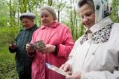 60 епархий приняли участие в общероссийской акции «Любовь сорадуется истине»