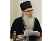 Епископ Бачский Ириней: Сербы всегда на стороне России как исторического союзника и друга