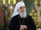 Поздравление Святейшего Патриарха Кирилла Патриарху Иринею по случаю пятой годовщины избрания на Престол Патриархов Сербских