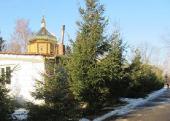 В Тульчинской епархии совершен акт вандализма на территории больничного храма Украинской Православной Церкви