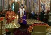 Состоялась очередная поездка епископа Подольского Тихона в Австрию и Венгрию