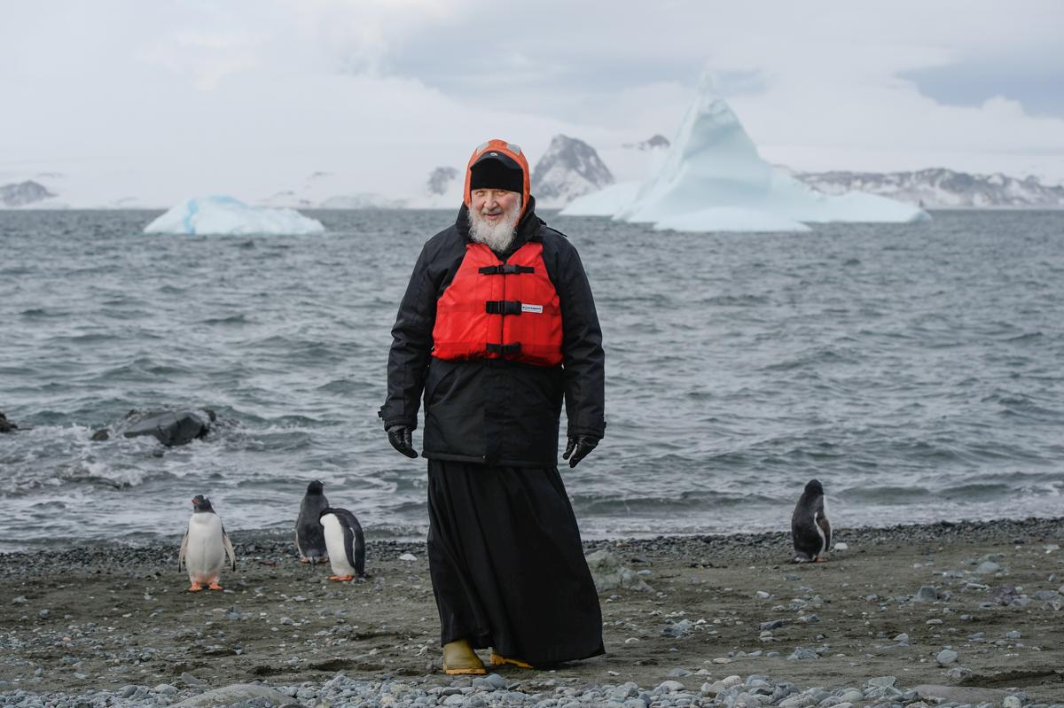 Антарктика, остров Ватерлоо. 17 февраля 2016 г.