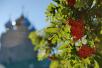19 августа. Патриарший визит в Мурманскую митрополию