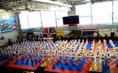 В Подмосковье состоялось открытие фестиваля боевых искусств «Кубок святителя Николая Японского»