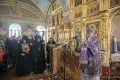 Председатель Синодального отдела по социальному служению принял участие в открытии благотворительной ярмарки «Плакучая ива» в Зосимовой пустыни