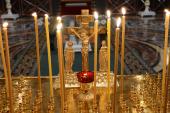 Санкт-Петербургская епархия окажет помощь пострадавшим и родственникам погибших в метрополитене