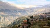 При содействии Отдела внешних церковных связей Московского Патриархата православным христианам Сирии доставлена гуманитарная помощь