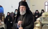 Блаженнейший Архиепископ Кипрский Хризостом выразил поддержку канонической Украинской Православной Церкви