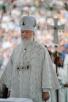 Патриарший визит в Санкт-Петербургскую митрополию. Литургия на Соборной площади Выборга. Хиротония архимандрита Феодорита (Тихонова) во епископа Скопинского