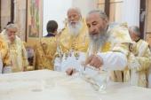 Блаженнейший Митрополит Онуфрий возглавил торжества по случаю 10-летия основания Елисаветинского монастыря в Кропивницком