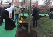 Святейший Патриарх Кирилл принял участие в посадке деревьев главной липовой аллеи Донского монастыря