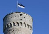 Святейший Патриарх Кирилл поздравил Президента Эстонской Республики Керсти Кальюлайд со 100-летием провозглашения государственной независимости