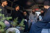 Валаамский монастырь реализует программу по оздоровлению лесов на архипелаге