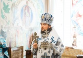Интервью ректора Санкт-Петербургской духовной академии епископа Петергофского Серафима