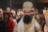 Митрополит Видинский Даниил: «Собор на Украине неканоничен»