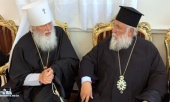 Metropolitan Nektarios of Kerkyra: We recognize only one canonical Church in Ukraine – the Ukrainian Orthodox Church