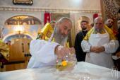 Предстоятель Украинской Православной Церкви освятил храм в селе Петропавловская Борщаговка