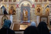 Председатель Синодального отдела по монастырям и монашеству возглавил Литургию на подворье Троице-Сергиевой лавры на Куликовом поле
