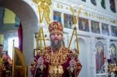 Митрополит Бориспольский и Броварской Антоний: Церковь пытаются втянуть в геополитику