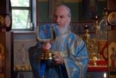 Как живет Зарубежная Церковь в Германии при пандемии коронавируса
