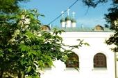 В церковной больнице святителя Алексия в Москве начали проводить тестирование на антитела к COVID-19