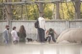 В Ростовской епархии реализуется проект помощи бездомным и нуждающимся «Пять хлебов»