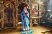 В праздник Покрова Пресвятой Богородицы Святейший Патриарх Кирилл совершил Литургию в Александро-Невском скиту