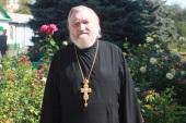 Протоиерей Владимир Акиншин: «Главная проблема молодых священников — семейные неурядицы»