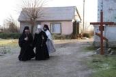 Начался сбор материалов для канонизации расстрелянной большевиками братии Тышковского монастыря