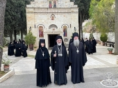 Память Сретения Пресвятой Богородицы и праведной Елисаветы совершили в Иерусалиме