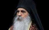 Епископ Бачский Ириней: Вмешательство Патриарха Варфоломея на Украине распространило раскол почти на все Православие