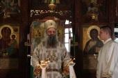 Святейший Патриарх Сербский Порфирий возглавил торжества престольного праздника на подворье Русской Православной Церкви в Белграде