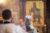 В Казанской епархии готовы оказать всестороннюю поддержку родственникам погибших и пострадавших при падении самолета в Мензелинском районе РТ