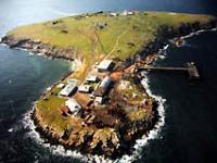 Обсуждается вопрос строительства храма на острове Змеином в Черном море