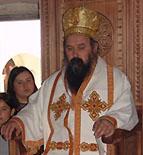 Епископ Далматинский Фотий: 'Нам суждено нести крест'